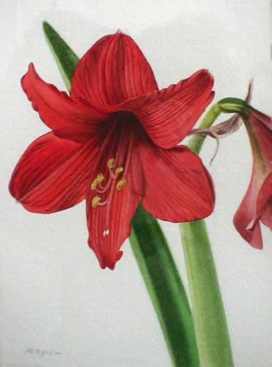 saper galleries is the source for david herzig floral. Black Bedroom Furniture Sets. Home Design Ideas